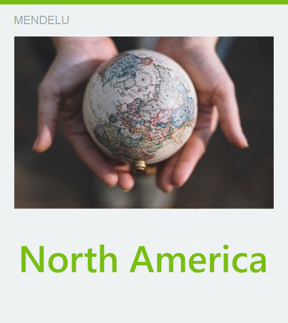 bilateral mobilities North America